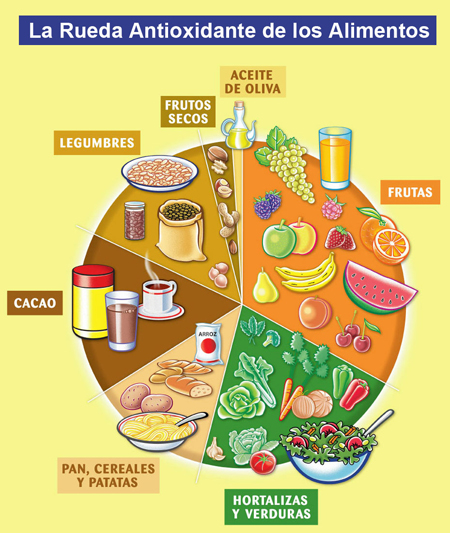 rueda_antioxidantes_hr.jpg