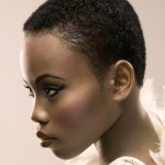 2012-Fall-and-Winter-2013-Short-Hairstyles-and-Haircut-Trends-For-Black-and-African-American-Hair