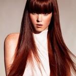 embedded_Auburn_Brown_Hair_Color