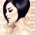 embedded_Dark_Plum_Hair_Color