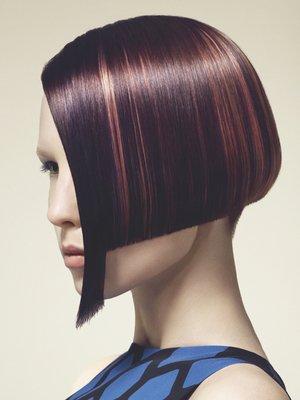 embedded_Plum_Brown_Hair_Color