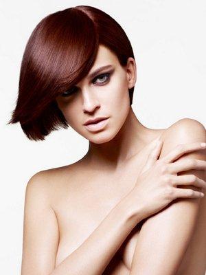 embedded_Winter_Dark_Auburn_Hair_Color