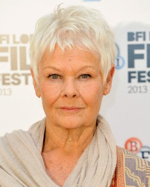 embedded_judy-dench-gray-hair_color